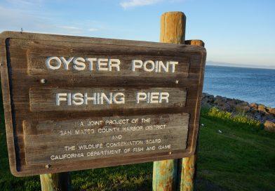 オイスターポイントに釣りに行ってきたよ。Oyster point in Bay Area