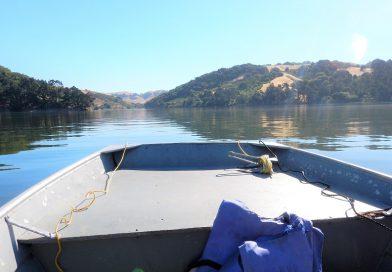 ボートでバス釣りin サンパブロリザバー Bass Fishing in San Pablo Reservoir, California
