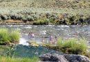 イエローストーン国立公園を楽しもう 3. 温泉!? in ボイリング リバー編 Boiling River in Yellowstone National Park