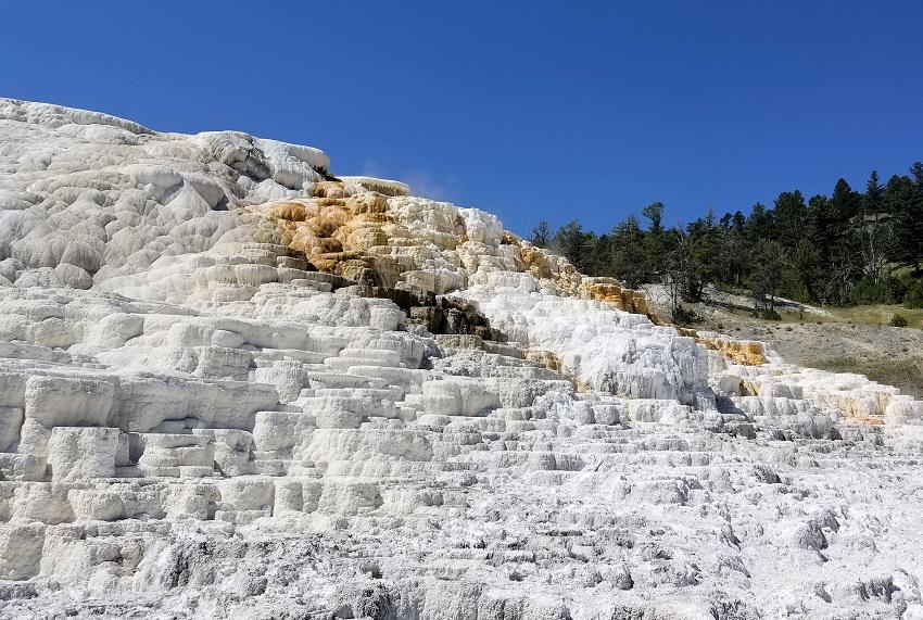 イエローストーン国立公園を楽しもう 4. マンモス・テラスマウンテン編 Mammoth Terrace Mountain in Yellowstone National Park