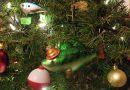 クリスマスツリーを切りに行こう!ハーフムーンベイ カリフォルニア。 Cut your own Christmas tree in Half Moon Bay, California