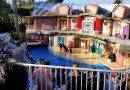 シーワールド サンディエゴに行ってみよう!その2 SeaWorld San Diego in California PART 2